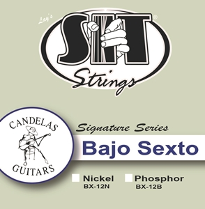 Bajo Sexto 12-String Nickel picture