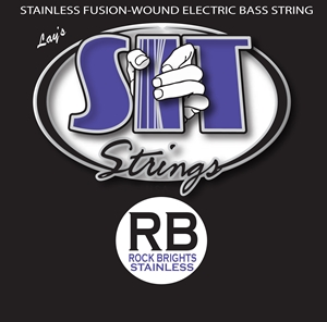 The LowEnd Custom RB Stainless Steel Bass 5-String picture
