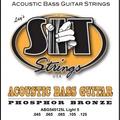 Acoustic Bass 5-String Light