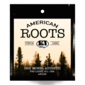 American Roots Monel Acoustic Pro Light