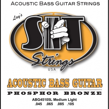 Acoustic Bass 4-String picture