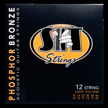 Phosphor Bronze Acoustic 12-String Light picture