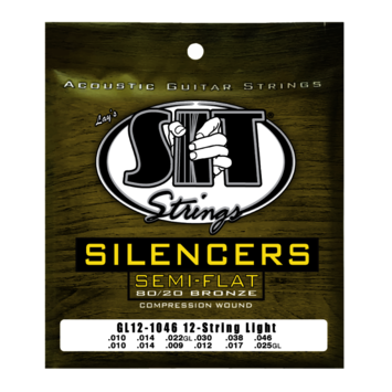 Silencer 80/20 Acoustic 12-String Light picture