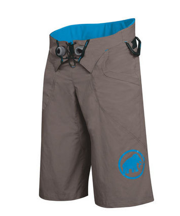 Realization Shorts Dark Oak-Cyan L picture