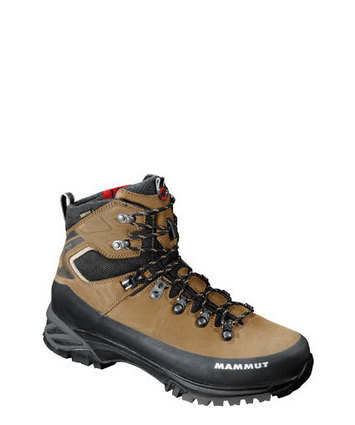 Appalachian GTX® Women Brown-Taupe 5.5 picture