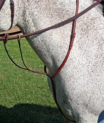 Millbrook Running Martingale picture