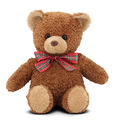 Tucker Teddy Bear Stuffed Animal