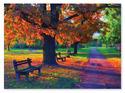 Walk in the Park Cardboard Jigsaw - 1500 Pieces