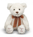 Bedtime Prayer Bear Talking Stuffed Animal