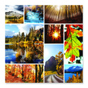 Autumn Snapshots Cardboard Jigsaw - 1000 Pieces