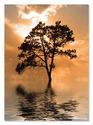 Tree Island Cardboard Jigsaw - 500 Pieces