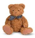 Little Chestnut Teddy Bear Stuffed Animal