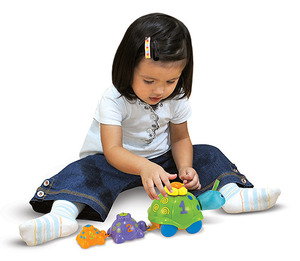 Turtle Parade Learning Toy