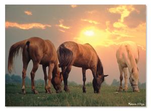 Sunset Horses Cardboard Jigsaw - 300 Pieces