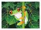 Red-Eyed Tree Frog Cardboard Jigsaw - 60 Pieces