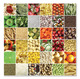 Square Meals Cardboard Jigsaw - 500 Pieces