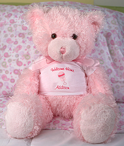 Newborn Girl Bear