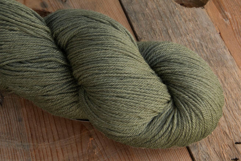 Crock-O-Dye -1583 Lichen picture