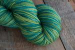 Crock-O-Dye - 525 Amazon