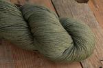 Crock-O-Dye -1583 Lichen