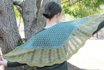 2336 Old Shale Shawl