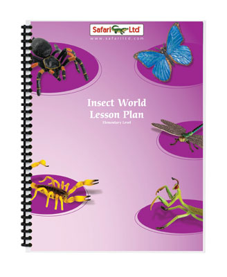 Insect World Lesson Plan