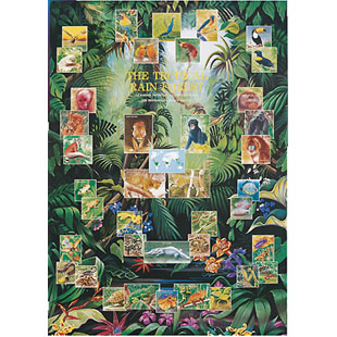 Educational Posters The Tropical Rainforest Non Laminated picture