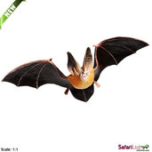 Incredible Creatures <br> Townsend's Big-eared Bat