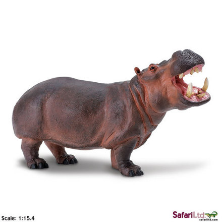 "Wildlife Wonders<font size=""-1"">� </font> Hippopotamus picture"