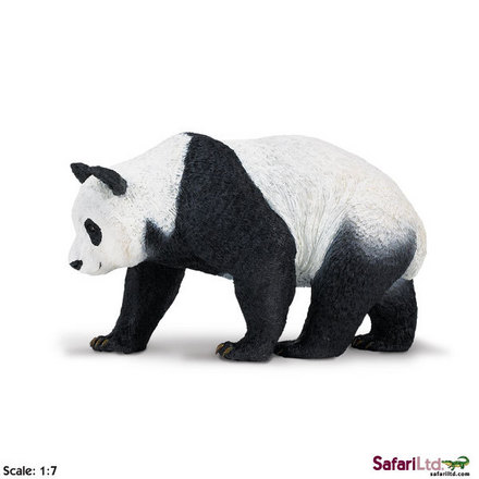 "Wildlife Wonders<font size=""-1"">� </font> Panda picture"