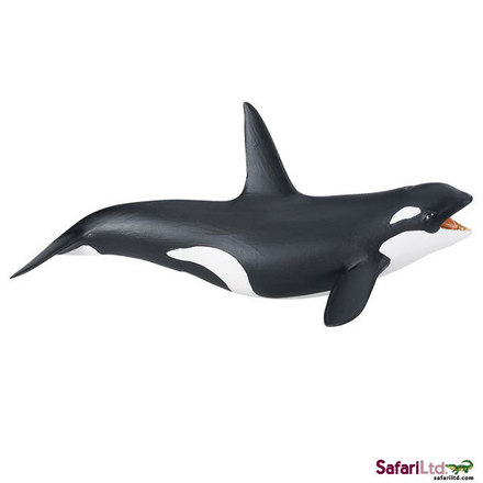 "Wild Safari<font size=""-1"">® </font> Sea Life Killer Whale picture"