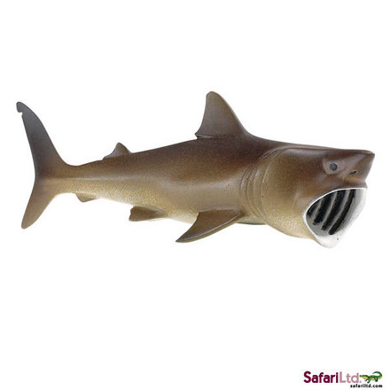 "Wild Safari<font size=""-1"">® </font> Sea Life Basking Shark picture"