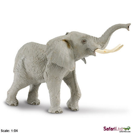 "Wildlife Wonders<font size=""-1"">� </font> African Elephant picture"