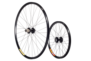 Recumbent Disc Standard Wheelset picture