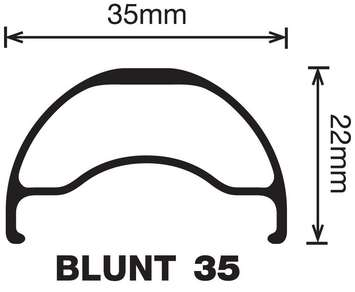 "Blunt 35 - 29"" picture"