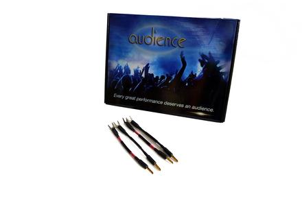 Audience AU24 SE Speaker Jumpers (set of 4) picture