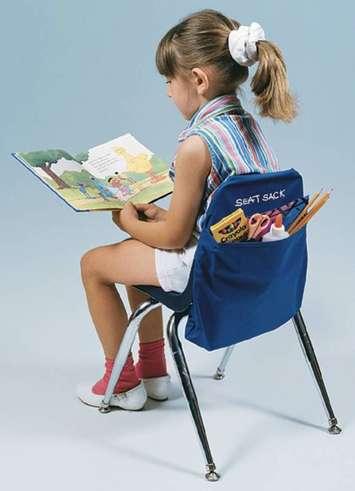 Seat Sack™ - Standard original Image