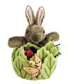 Marionnettes et leurs cachettes - Lapin dans une laitue