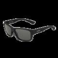 Holman Rubber black Polarized TNS Oleo AR