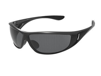 Highwood  Shiny Black/Black  Polarized TNS oleo AF picture