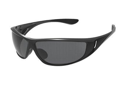 Highwood  Shiny Black/Black  Polarized TNS oleo AF picture