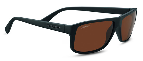 Claudio Satin Black Polarized Drivers picture