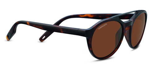 Leandro   Satin Tortoise/Satin Dark Gun  Polarized Drivers picture