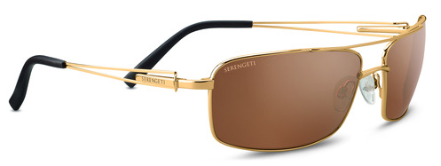 Dante Shiny Bold Gold    Polarized Drivers Gold picture
