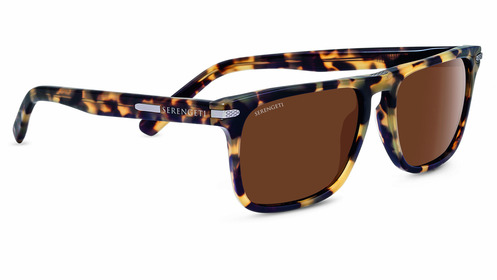 Carlo Large Tortoise Polarized Drivers picture