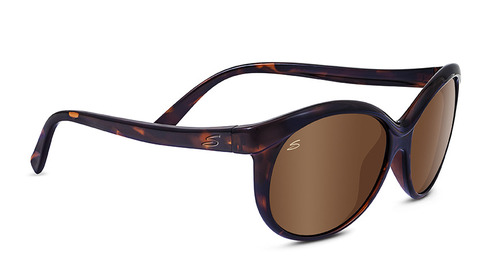 Caterina Shiny Tortoise Polarized Drivers Gold picture