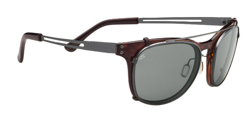Enzo Shiny Dark Tortoise/Shiny Dark Gunmetal, Polar PhD CPG picture