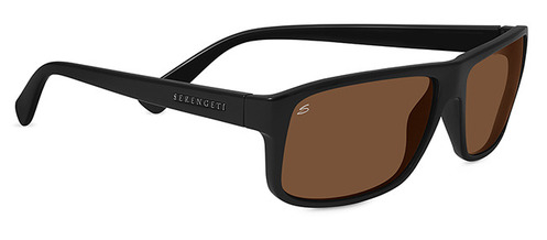 Claudio Shiny Back Polarized Drivers picture
