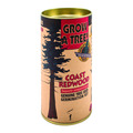 Coastal Redwood Grow Kit