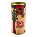 Giant Sequoia Grow Kit
